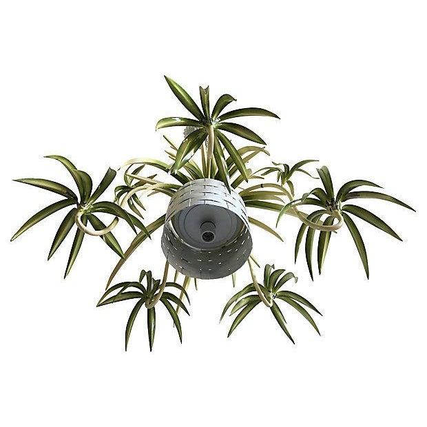 Italian Spider Plant Chandelier - Image 4 of 9