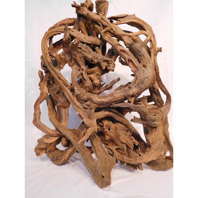 Image of Sculptural Driftwood Art Lamp