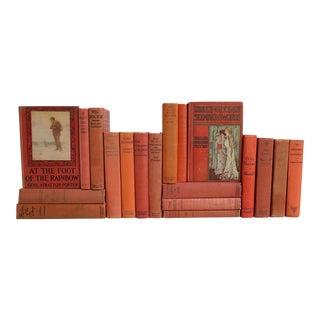 Vintage Weathered Salmon Books - Set of 19