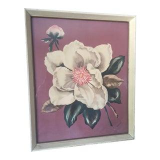 Vintage 1940's Magnolia Pink Burst Print