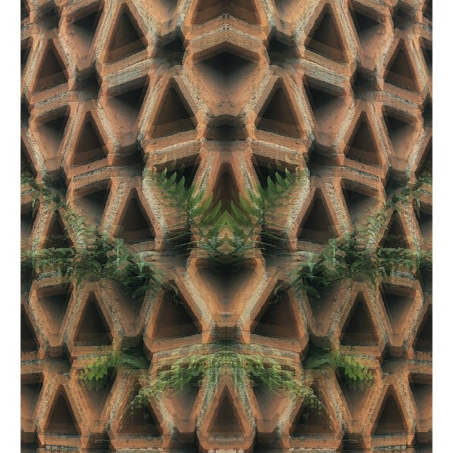 Fern vs Geostructure Photo Collage Print - Image 2 of 4
