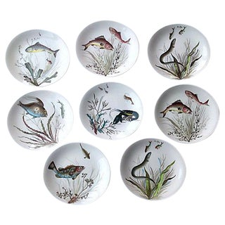 English China Fish Plates - Set of 8