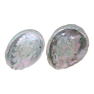 Decorative Abalone Shells - A Pair