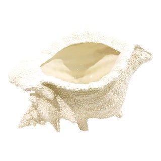 Ceramic Cream Textured Conch Shell Planter II