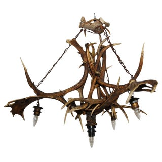 Elk and Deer Horn Chandelier