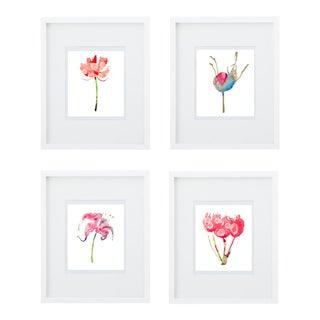 Botanical Art Print Grouping - Set of 4