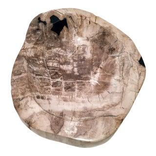 Polished Petrified Wood Gentleman's Catch-All