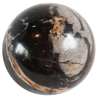 Solid Petrified Wood Sphere