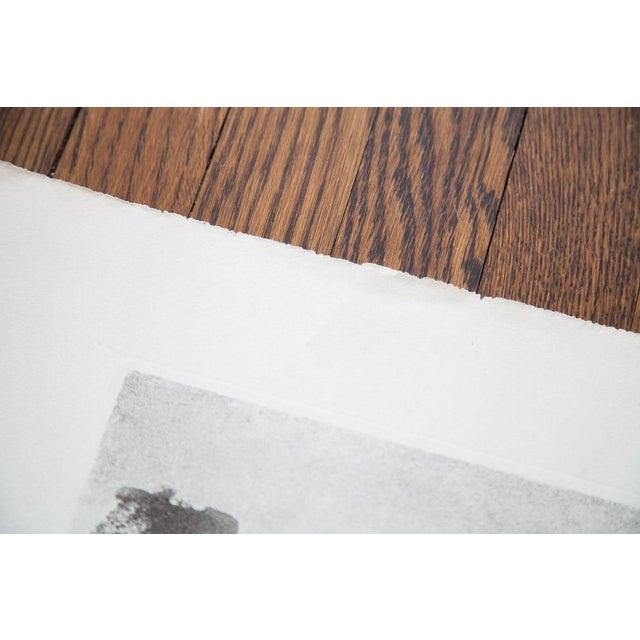 D.R. Peretti Griva Vintage Bromoil Transfer - Image 4 of 5