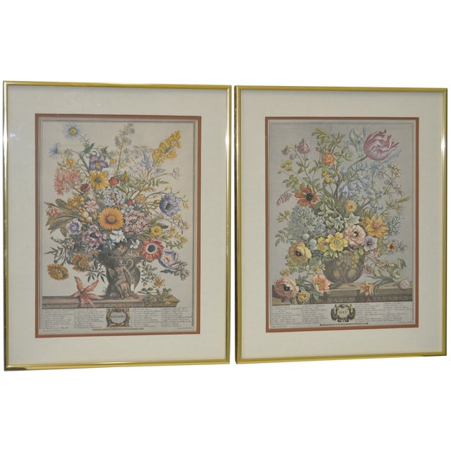 Vintage Hand Colored Botanical Prints - A Pair - Image 1 of 6