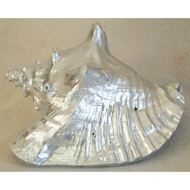 Image of Large Silver Gilt Conch Seashell