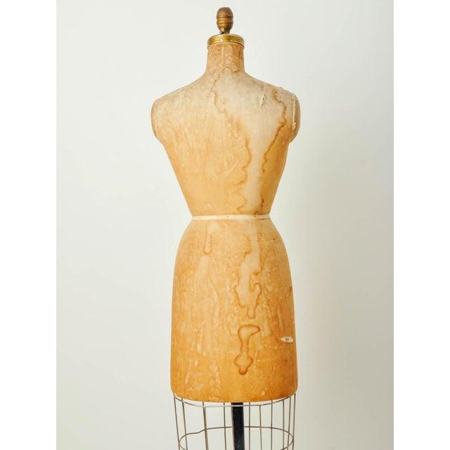 Image of Vintage Bauman Model Dress Form Ladies Mannequin