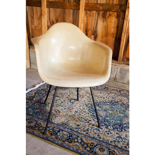 1950s Eames Venice Label Parchment Chair - Image 3 of 7