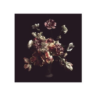"Ashley Woodson Bailey ""Porcelain"" Photograph"