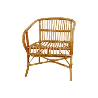 Franco Albini Rattan Club Chair