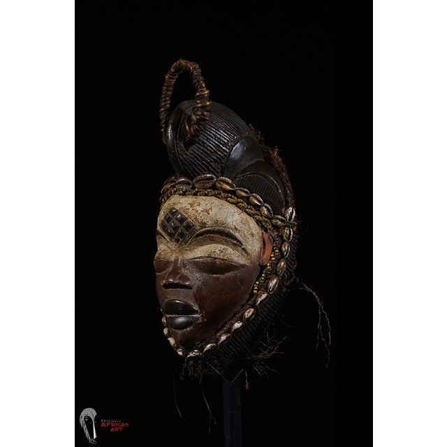 Punu African Tribal Mask from Gabon - Image 4 of 8