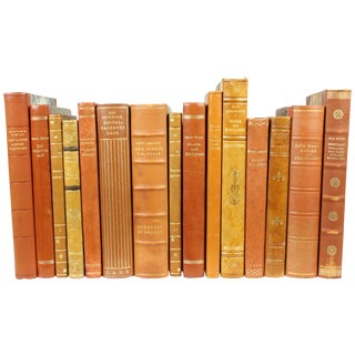 Designer Scandinavian Books - Set of 15
