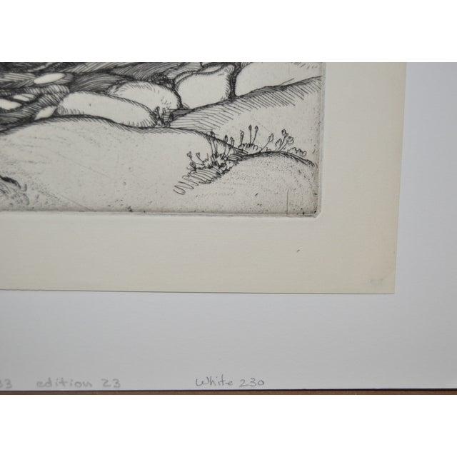 """Image of """"Ice Worn Granite"""" Vintage Etching by Roi Partridge"""