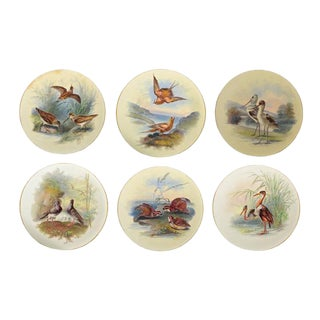 Thomas Minton Porcelain Bird Cabinet Plates Signed by William Mussil