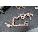Image of Decorative Gnarled Driftwood