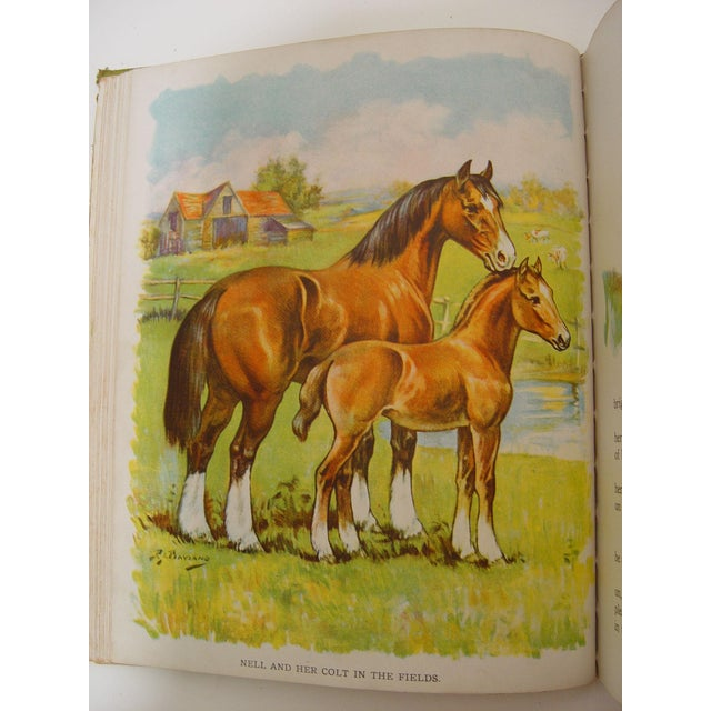 1928 Animal Friends Story Book - Image 7 of 10