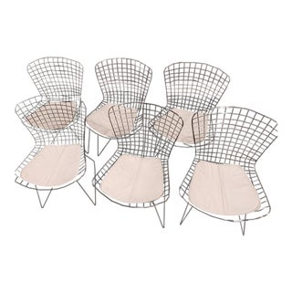 Bertoia-Style Wire Dining Chairs - Set of 6