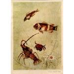 Image of Silvio Polloni Andrea Doria Menu Prints - Set of 4