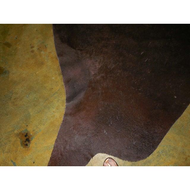 Large Chocolate Brown Cowhide Rug - 7′7″ × 8′10″ - Image 8 of 8