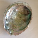 Image of Vintage Abalone Shell Bowl