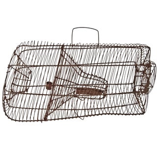 Pigeon Recovery Trap