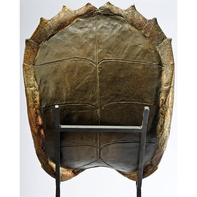 Image of Decorative Faux Turtle Shell on Wrought Iron Stand