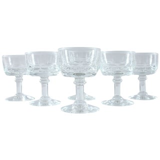 French Petite Champagne Glasses - Set of 6