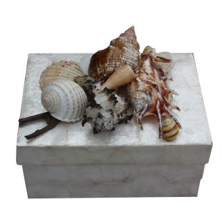Mother of Pearl Shell Box