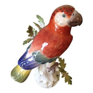 Antique Meissen China Parrot