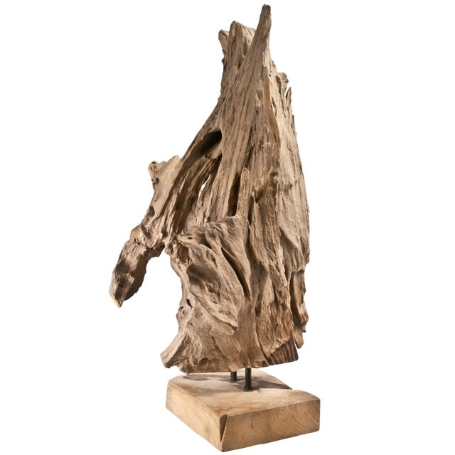 Image of Driftwood Fragment on Stand IV