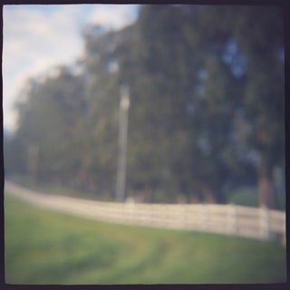 """Fenceline"" Photography"