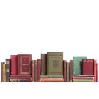 Distressed Gilt Earthtone Minis - Set of 25 Books