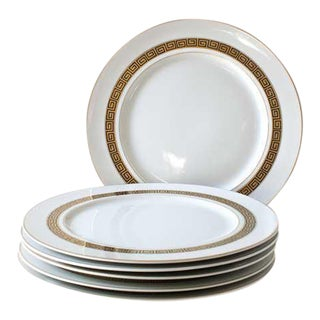 Greek Key Dinner Plates - Set of 6