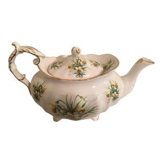 Hammersley Yellow Jonquils Teapot Spode
