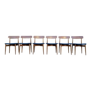 Solid Walnut Navy Blue Dining Chairs - Set of 6