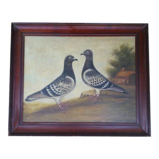 French Racing Pigeon Oil Painting