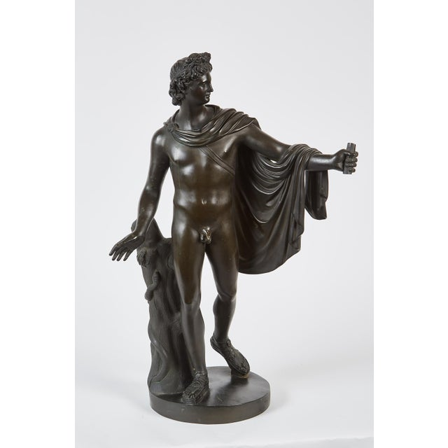 Late 19th Century French Bronze Sculpture of Apollo Belvedere - Image 2 of 6