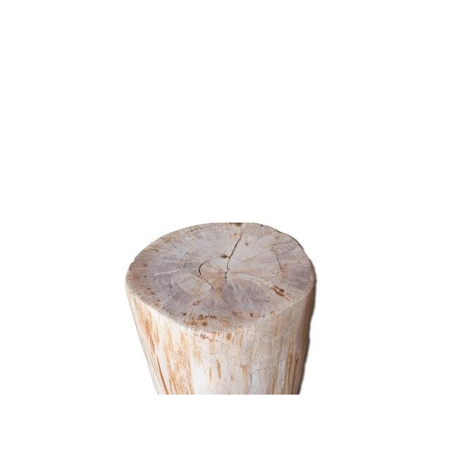 Petrified Wood Stool - Image 2 of 4