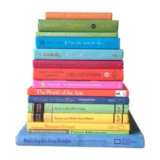 Brightly Colored Decorative Books - Set of 15