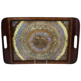 Vintage 1940s Brazilian Butterfly Wing Art Tray