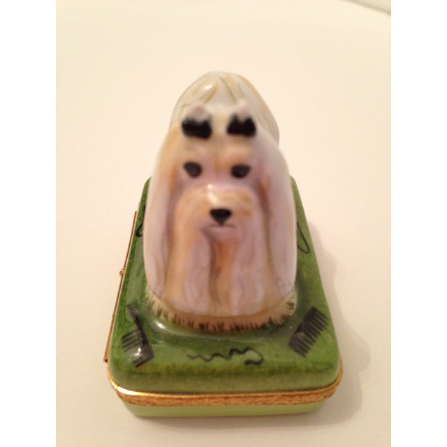 Image of Limoges Box with White Maltese Top