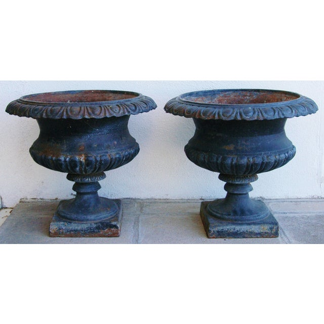Early 19th-C. Cast Iron Urn Planters - Pair - Image 3 of 11