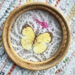 Image of Vintage Butterfly Coasters - Set of 5