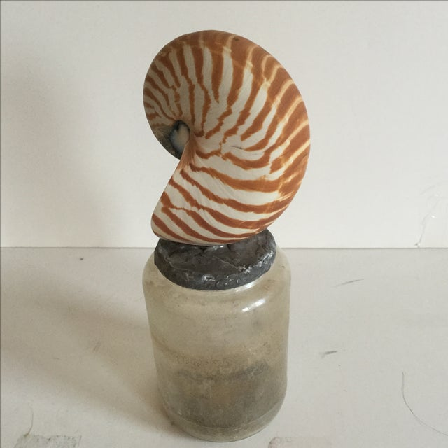Image of Antique Shell Bottle