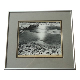 "Framed ""Frozen Pool"" Photograph"